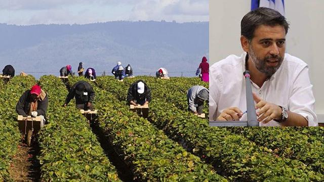 Καβάλα:-Αιτήσεις-για-πρόσληψη-εργατών-γης-δέχεται-η-υπηρεσία-Αλλοδαπών