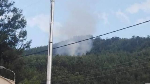 Πυρκαγιά-σε-δασική-περιοχή-στη-Θάσο
