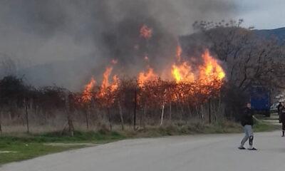 Πολύ-υψηλός-κίνδυνος-πυρκαγιάς-στην-ΠΕ.-Καβάλας-(κατηγορία-κινδύνου-4)