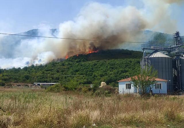 Πυρκαγιά-σε-δασική-έκταση-στην-είσοδο-των-Αντιφιλίππων